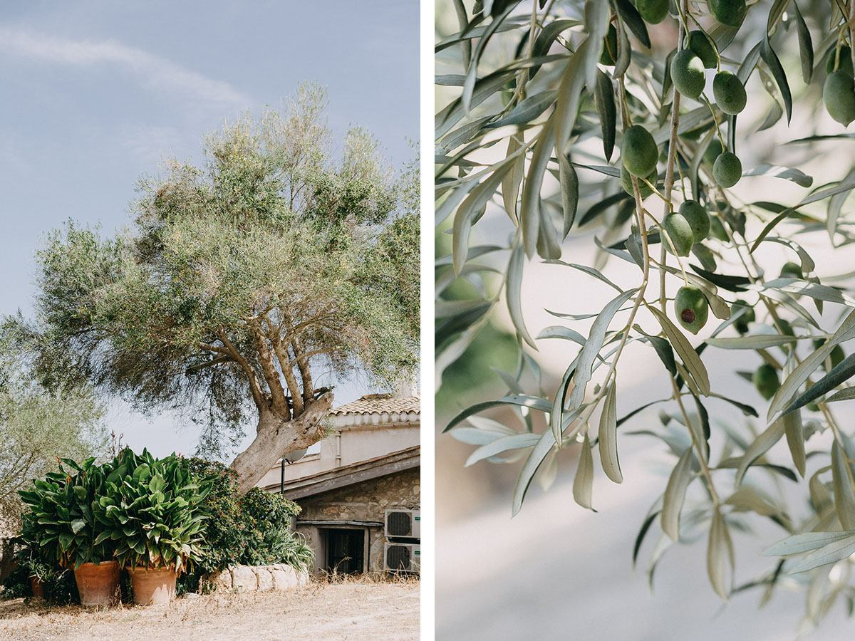 finca wedding in mallorca A Finca Wedding in Mallorca | 3 tips from our Mallorca Wedding Photographer